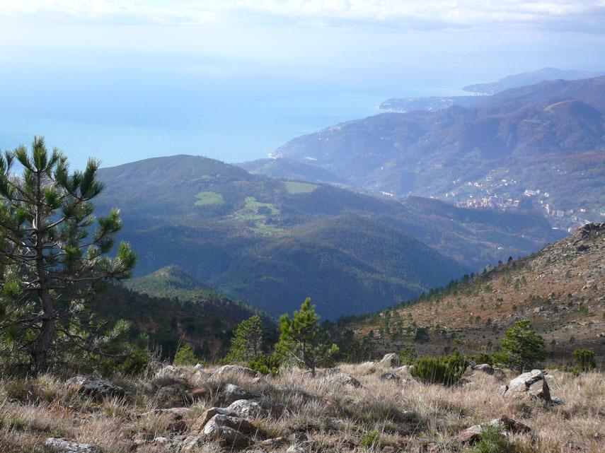 Monte punta martin monte penello baiarda for Piani di serra in collina
